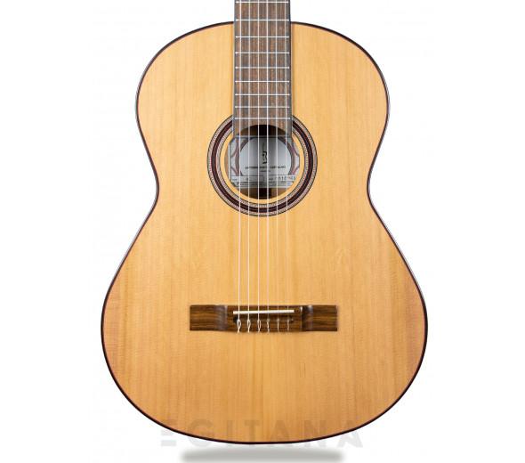 Guitarra Clássica (adulto) 4/4/Guitarra Clássica APC 8C