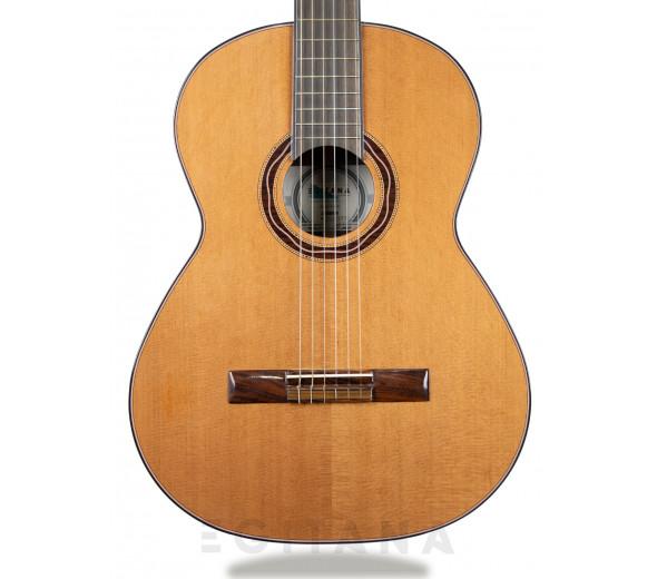 Guitarra Clássica APC EXO EMC