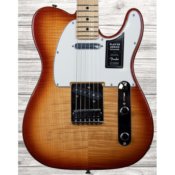Guitarras formato T Fender Limited Edition Player Telecaster Plus Top Sienna Sunburst