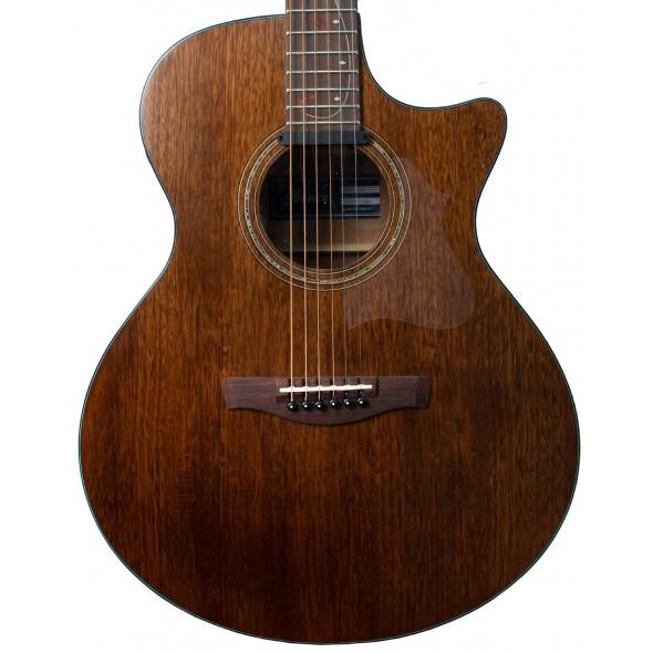 Outras guitarras acústicas Ibanez AE295-LGS
