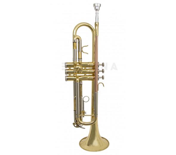 Trompete/Trompete Wisemann DTR-200